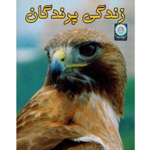 خرید مستند پرندگان
