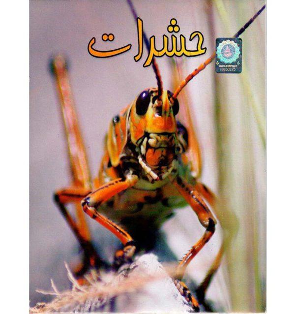 خرید مستند حشرات